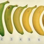 Μάντεψε ποια απ'αυτές τις μπανάνες είναι πιο υγιεινή