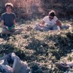 «I Love Acorns»: Η ιστορία μιας Αμερικανίδας που μετακόμισε στην Κέα και ζωντάνεψε το εμπόριο βελανιδιού