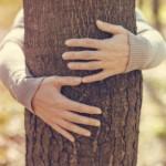 Το αγκάλιασμα των δέντρων έχει θετικές επιπτώσεις στην υγεία του ανθρώπου