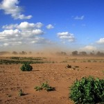 To ένα τρίτο της καλλιεργήσιμης γης του πλανήτη χάθηκε τα τελευταία 40 χρόνια