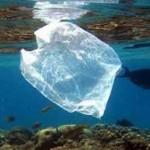 Αλόννησος : Βάλαμε τέλος στις πλαστικές σακούλες