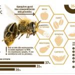 Η μείωση των μελισσών απειλεί τη γεωργία