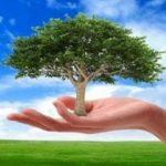 Περισσότερες δράσεις για το περιβάλλον, θέλει το 76% των Ευρωπαίων