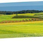 Ο Αγροτουρισμός στην Ελλάδα μια ελπιδοφόρα προοπτική για την Κοινωνική Οικονομία