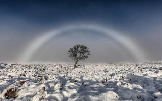 rainbow_b1