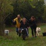 Οικοχωριό Σκάλα: Κάλεσμα σε εθελοντές για εργασία σε ανταλλακτική βάση