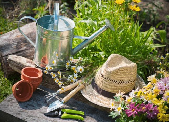 Οι Καλλιεργητικές εργασίες του Ιουνίου στον Κήπο Σας!