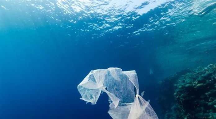 Τέλος στην πλαστική σακούλα από τις αρχές του 2018