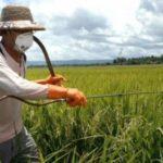 Απαραίτητη η δημιουργία ενός νέου μοντέλου στον αγροτικό τομέα