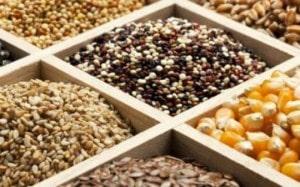 καλλιέργεια, σπόροι, διατήρηση των σπόρων