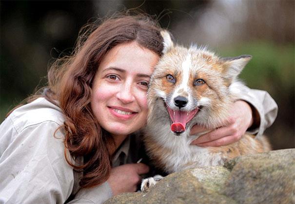 Μια αλεπού που σκέφτεται σαν σκύλος
