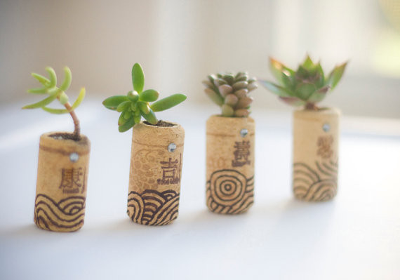mini-pots-cork-1